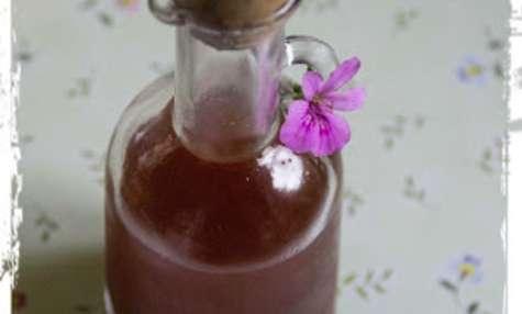 Recettes de huile essentielle de g ranium id es de for Vinaigre et huile essentielle