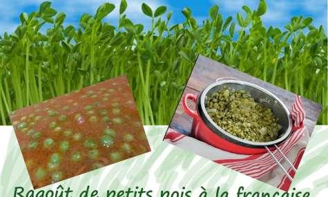 Ragoût de petits pois à la Française