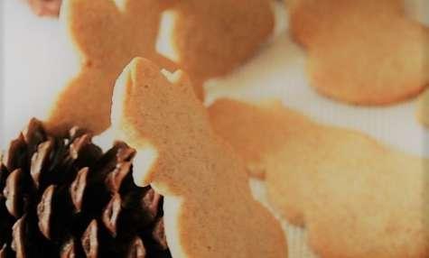 Petits Biscuits au Sucre Bio, aux épices de Noël