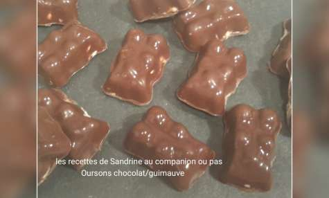 Oursons chocolat guimauve