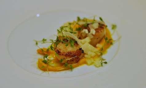Noix de Saint-Jacques belge, purée acidulée de carottes et radis blanc