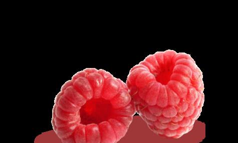 Coulis de framboise au Thermomix sans grains
