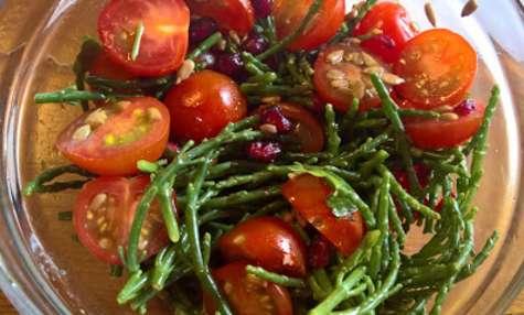 Salade de salicornes