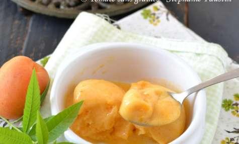 Sorbet abricot-verveine
