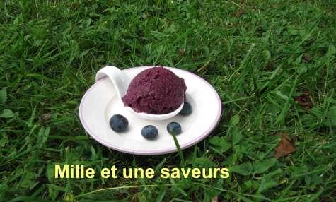 Crème glacée myrtilles aux yaourts natures sans sorbetière