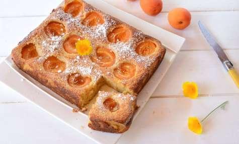 Gâteau moelleux abricot ricotta amande