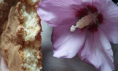 Gâteau light arôme vanille