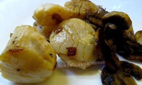 Noix de saint-Jacques et champignons au vinaigre balsamique