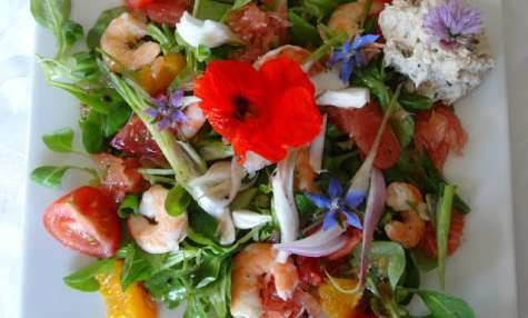 Salade colorée aux crevettes