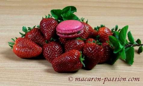 Macarons fraise-menthe