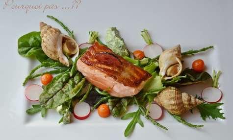 Saumon - Bulots - condiment carotte / épices - mayo aux herbes