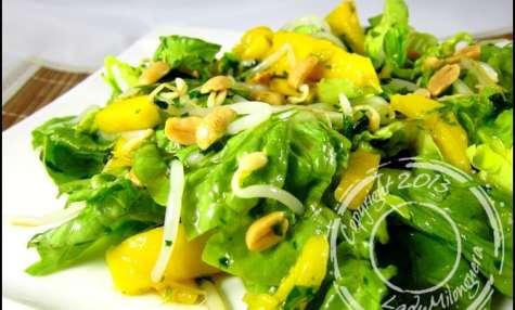 Salade thaï à la mangue, coriandre et soja