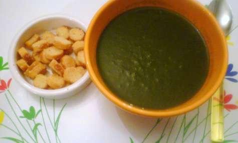 Soupe verte aux fanes de radis, épinards, poireaux, oseille