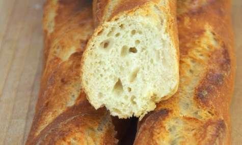 Les baguettes de tradition sur poolish à 33%