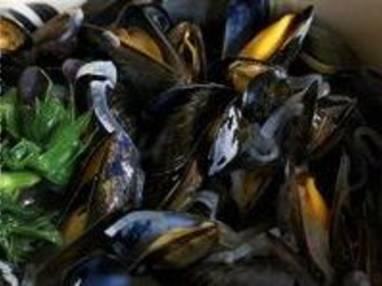 Moules marinière - Etape 11