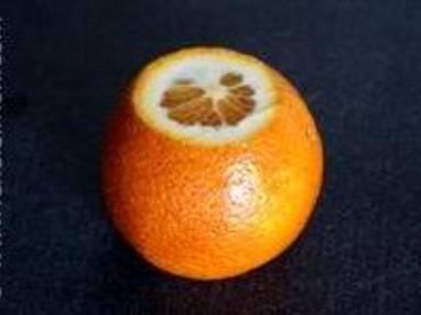 Peler une orange à vif - Etape 3