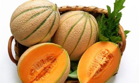 Les melons et pastèques