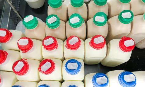 Le lait - Composition et standardisation du lait