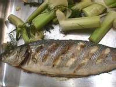Recettes de poissons