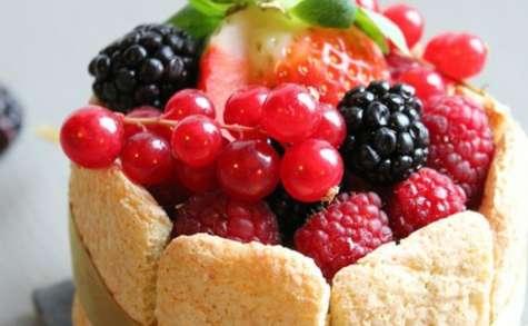 Charlotte aux fruits rouges