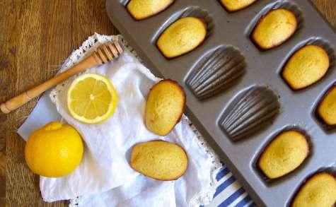 Madeleines d'antan au citron et au miel