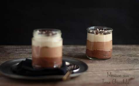 Mousse aux trois chocolats