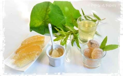 Ecorces de cédrat confites, confit à la verveine citronnelle, des pâtes de fruits, et sirop