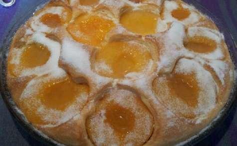Le gâteau aux abricots de la grand-mère de Valérie