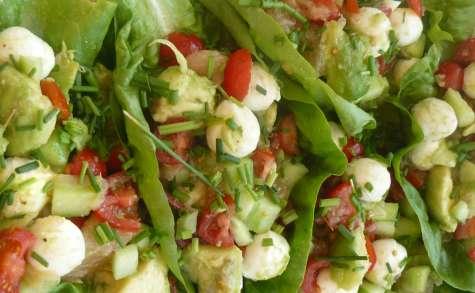 Salade fraîche d'été sur feuille