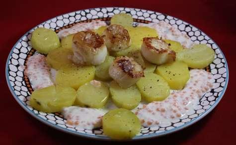 Saint-Jacques au citron caviar sur pommes vapeur