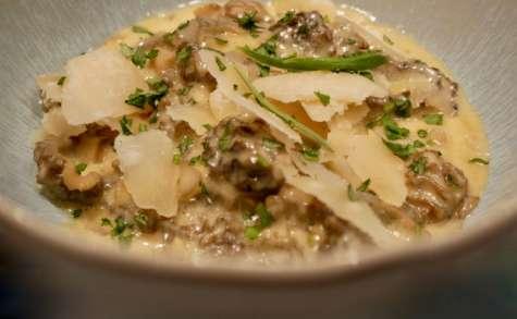 Morilles fraîches et crème à l'estragon et parmesan