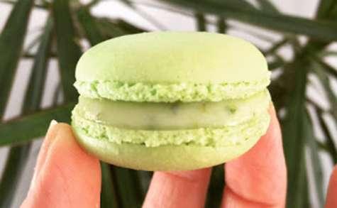 Macarons citron-vert, basilic de Christophe Felder
