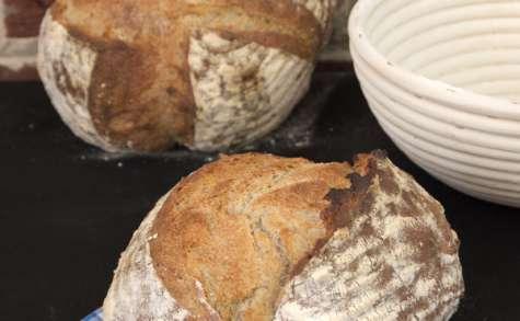 Le pain de campagne sur levain/levure