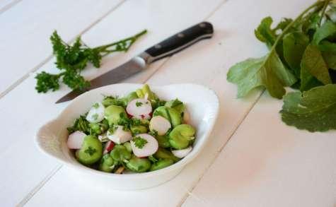 Salade de fèves et radis