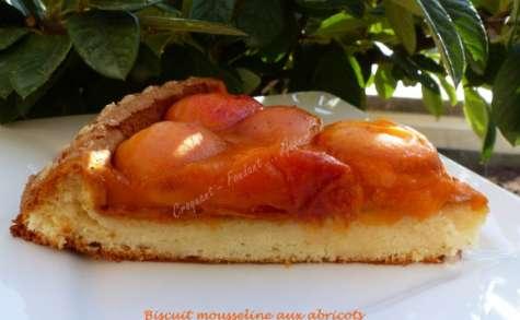 Biscuit mousseline aux abricots