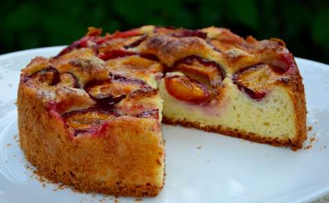 Gâteau brioché aux prunes