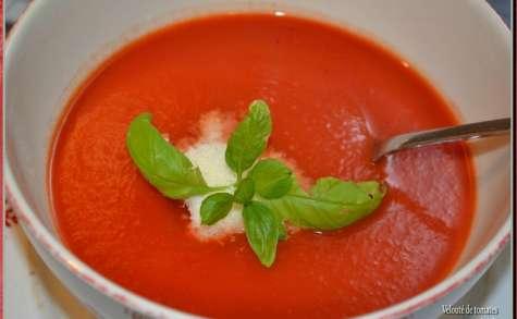 Velouté de tomates, parmesan et basilic