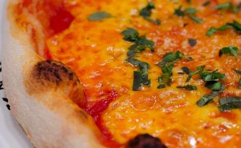 Pizza au cheddar, à l'ail et au basilic