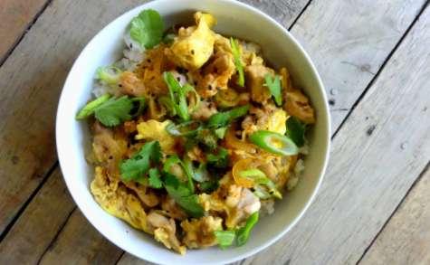 Oyakodon bol de riz, poulet, œuf