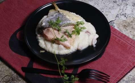 Filets d'omble chevalier à la crème de céleri au lard
