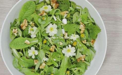 salade de jeunes pousses sauvages
