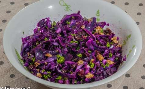 Salade de chou rouge aux cranberries et aux noix