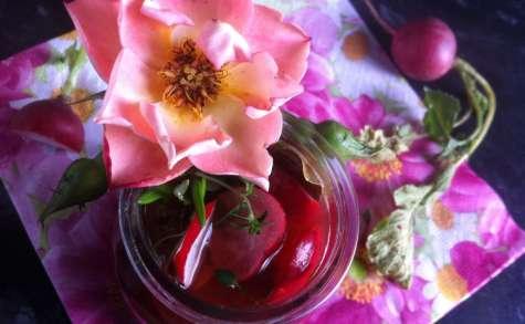 Pickles de radis rose au vinaigre de framboise