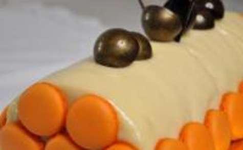 recettes de nougat par certi'ferme : bûche abricots et nougat