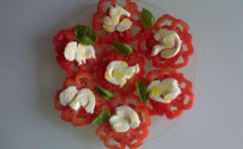Dentelle de tomates - mozzarella - basilic