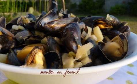 Moules de bouchot de l'Aiguillon au Fenouil