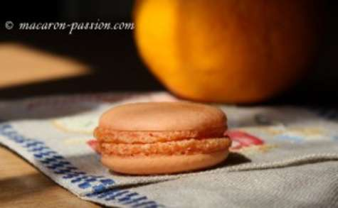 Macaron orange curd