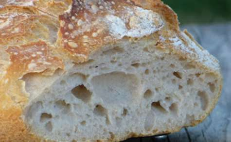 Levain naturel