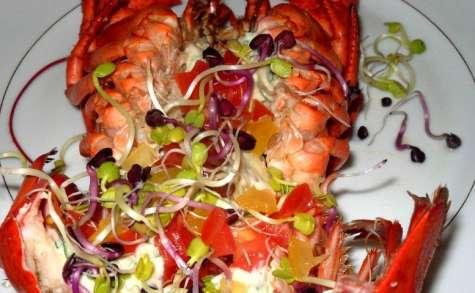 homard et graines germées sauce curry