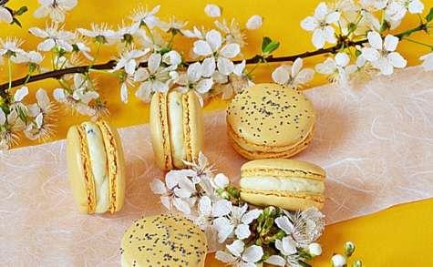 Macarons passion calisson